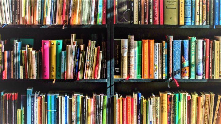 Imagen-ilustrativa-de-un-librero-random_-Casi-literal.jpg