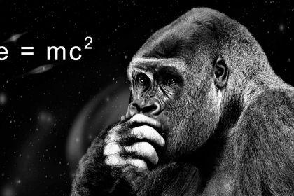 No-Einstein-no-dijo-eso_-Casi-literal.jpg