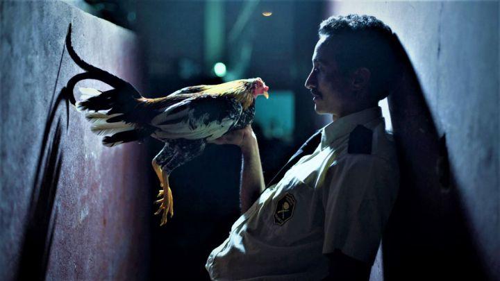 Por-las-plumas_-cine-costarricense_-Casi-literal.jpg