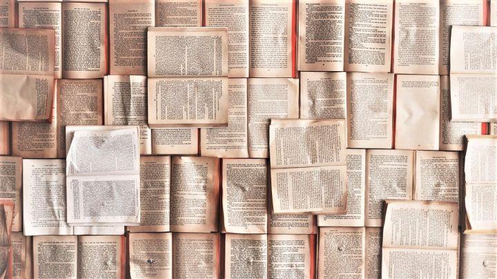 Sintomatología-de-una-bibliofilia_-Casi-literal.jpg