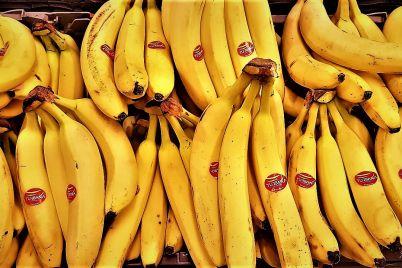 banana-land-cien-ac3b1os-de-un-filme-xenofc3b3bico_-casi-literal.jpg