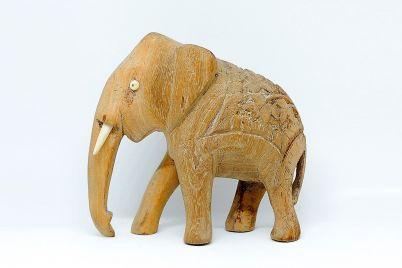 c2abel-elefante-birmanoc2bb-y-un-encuentro-en-el-bar-bulevar_-casi-literal.jpg
