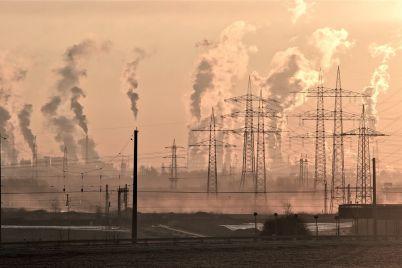 de-quc3a9-nos-sirve-celebrar-el-dc3ada-mundial-del-medio-ambiente_-casi-literal.jpg