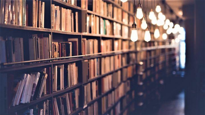 la-batalla-de-los-libros_-casi-literal.jpg