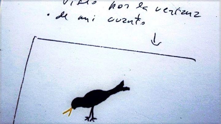 las-prosas-apc3a1tridas-y-una-librera-de-miraflores1.jpg